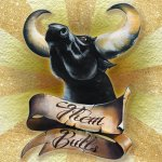 them-bulls